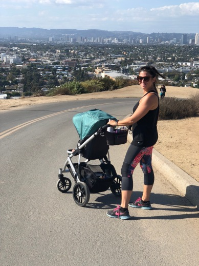 Culver_City_Hill_Hike_Uppababy_Vista_Toddler_chair